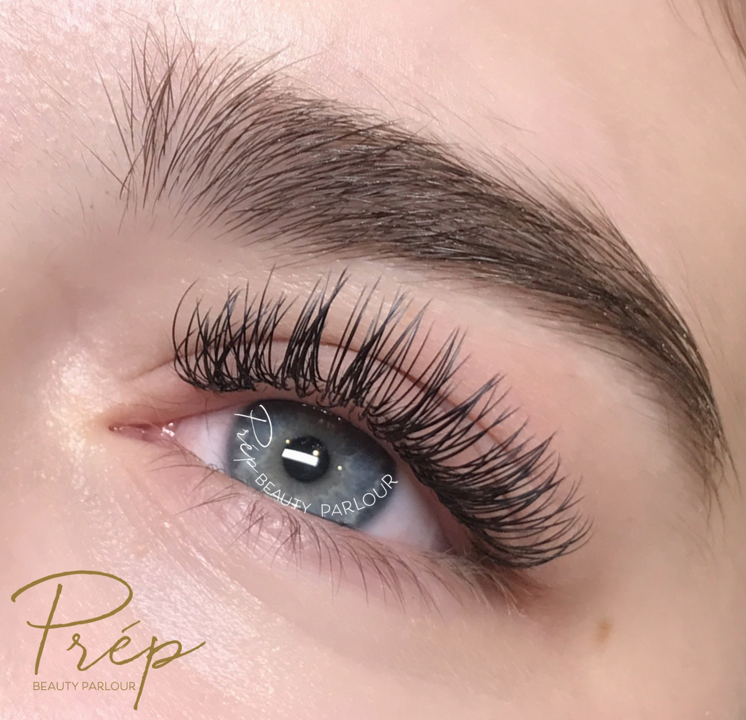 7572a486eca Best Royal Full Set Eyelash Extensions Vancouver |Prép Beauty Parlour